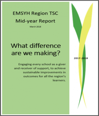 Mid year Report March 2019